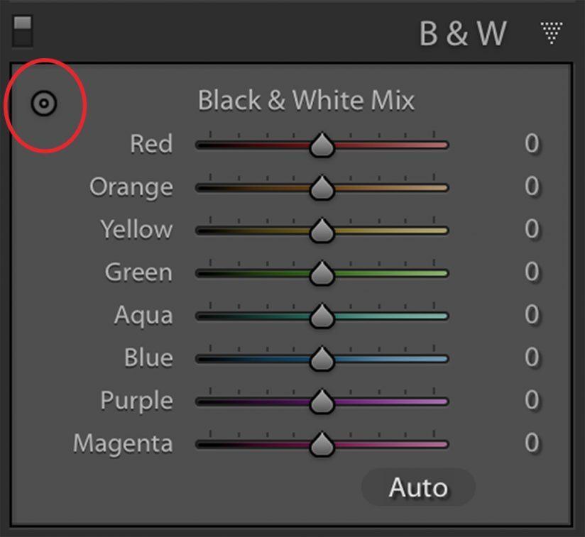 lightroom classic black-and-white targeted adjustment tool