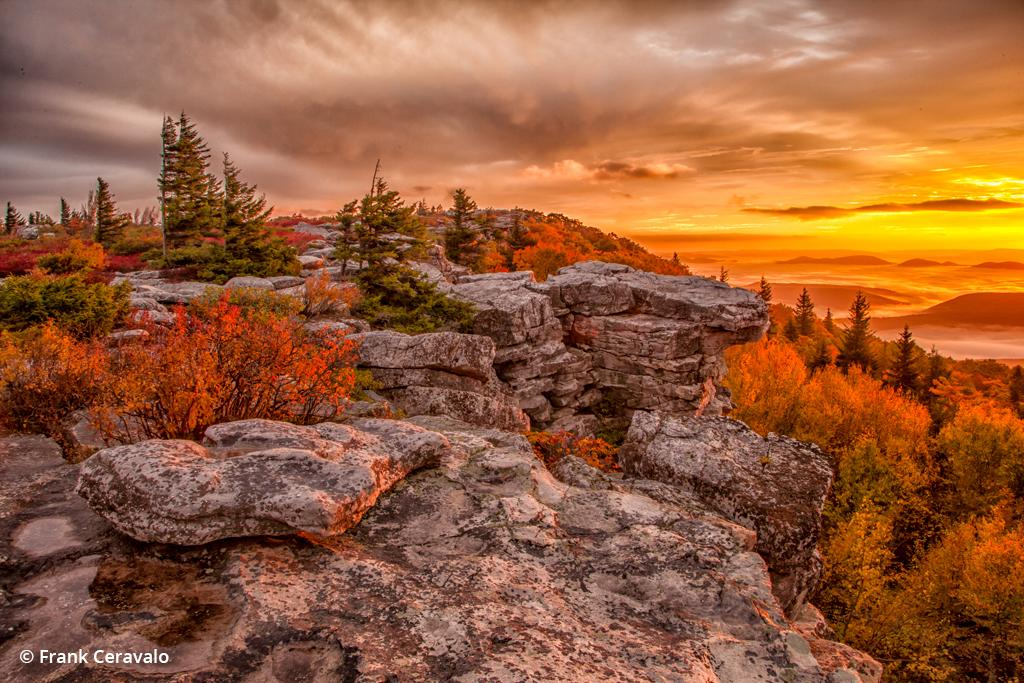photo of Dolly Sods
