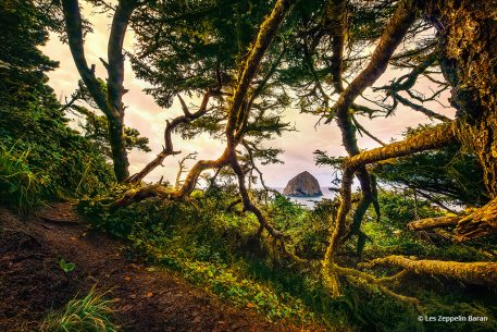 """Today's Photo Of The Day is """"Hidden Island"""" by Les Zeppelin Baran. Location: Cape Kiwanda State Natural Area, Pacific City, Oregon."""