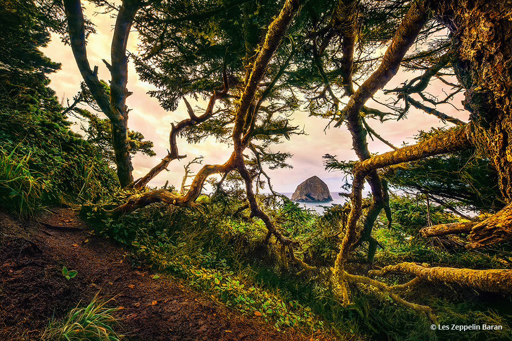 "Today's Photo Of The Day is ""Hidden Island"" by Les Zeppelin Baran. Location: Cape Kiwanda State Natural Area, Pacific City, Oregon."