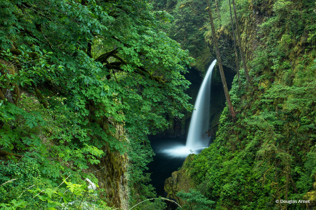 "Today's Photo Of The Day is ""Evolution"" by Douglas Arnet. Location: Columbia River Gorge, Oregon."