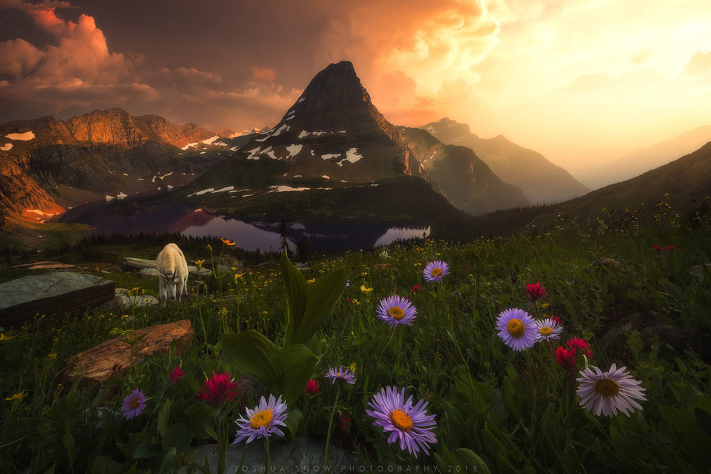 "Today's Photo Of The Day is ""Absolution"" by Joshua Snow. Location: Glacier National Park, Montana."