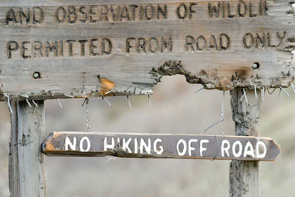 Image of a national parks safety sign in Denali National Park prohibiting hiking off road.