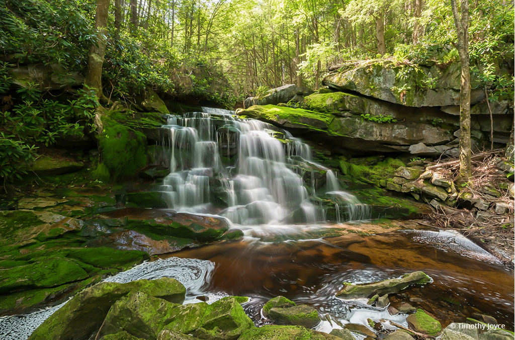 "Today's Photo Of The Day is ""Spring at Lower Ekalaka Falls"" by Timothy Joyce. Location: Blackwater State Park, West Virginia."