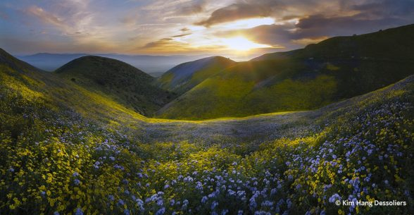 Congratulations to Kim Hang Dessoliers for winning the recent Spring In Our National Parks, Monuments, Forests And Public Lands with the image, Carrizo Plain Monument.