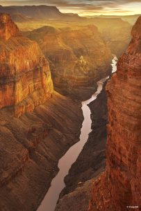 """Today's Photo Of The Day is """"Canyon Dreams"""" by Craig Bill. Location: Toroweap, Grand Canyon National Park, Arizona."""