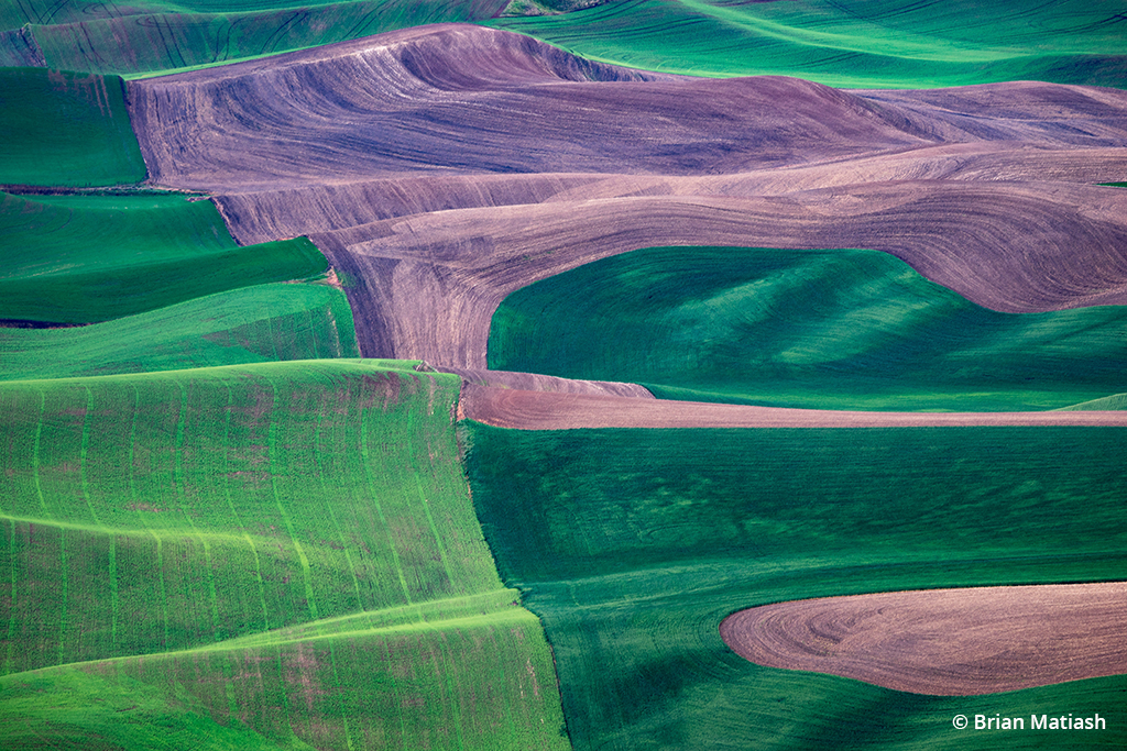 Exploring The Palouse