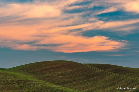 The Palouse in Washington State.