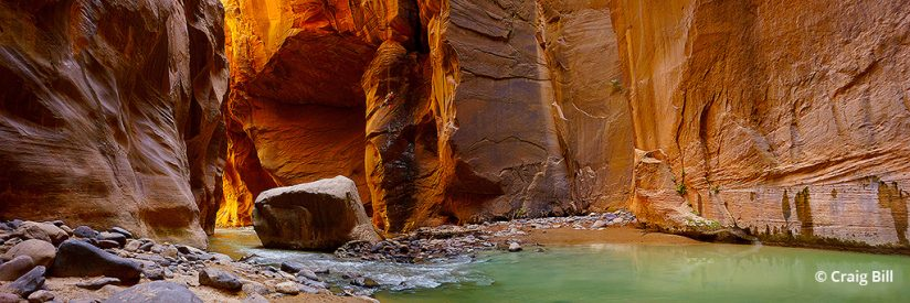 "Today's Photo Of The Day is ""Enlightenment"" by Craig Bill. Location: Zion National Park, Utah."