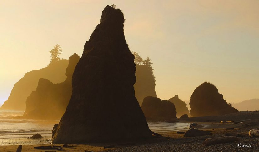 "Today's Photo Of The Day is ""Shades of Sea Stacks"" by RimaS. Loation: Olympic National Park, Washington."
