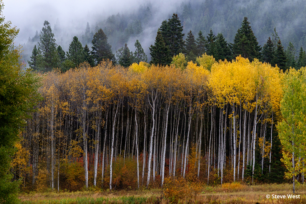 places for fall color photos: Washington State