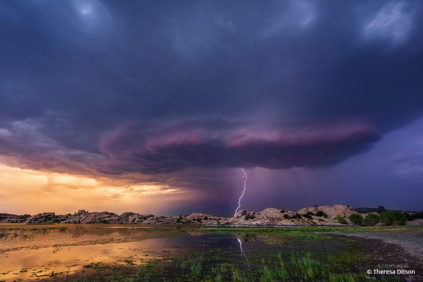 """Congratulations to Theresa Ditson for winning the recent Summer Storms Assignmetn with the image, """"Anticipation."""""""