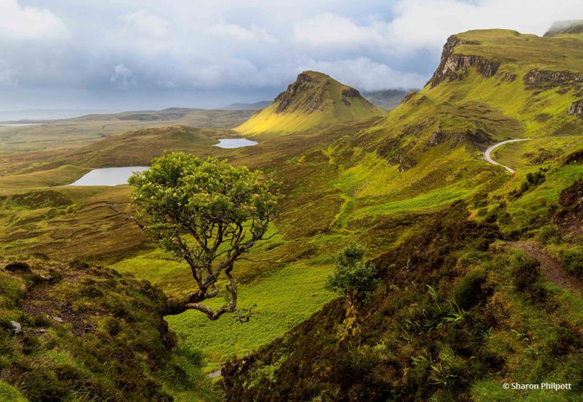 """Today's Photo Of The Day is """"Greenscapes"""" by Sharon Philpott. Location: Isle of Skye, Scotland."""