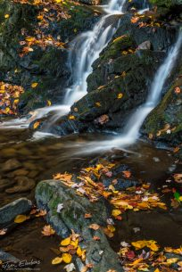 "Today's Photo Of The Day is ""Spruce Flat Falls"" by Tom Elenbaas. Location: Great Smoky Mountains National Park, Tennessee."