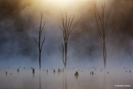 "Congratulations to Danielle Austen for winning the recent Atmospheric Landscapes with the image, ""Rise."""