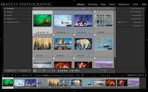 organizing your photos in Adobe Lightroom