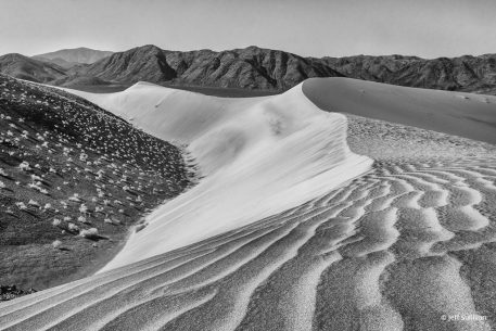 "Today's Photo Of The Day is ""Sand Dunes Black and White 2015"" by Jeff Sullivan. Location: Death Valley National Park."