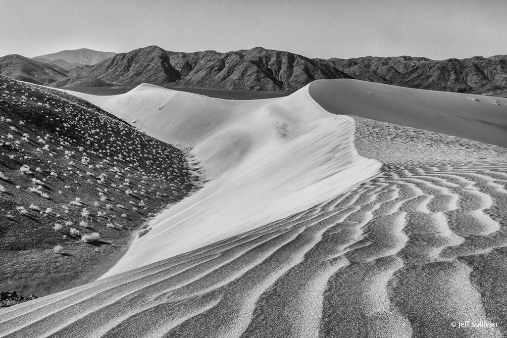 """Today's Photo Of The Day is """"Sand Dunes Black and White 2015"""" by Jeff Sullivan. Location: Death Valley National Park."""