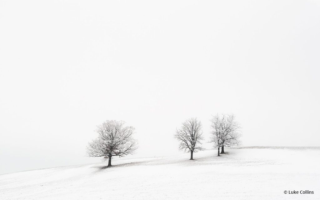 "Today's Photo Of The Day is ""Trees on a Hill"" by Luke Collins. Location: Dunn County, Wisconsin."