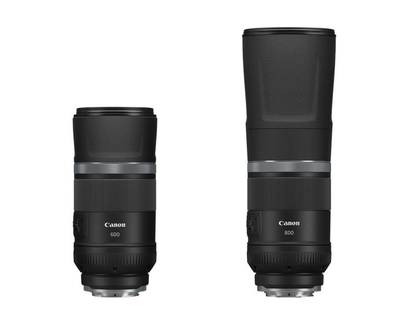 image of the Canon RF600mm F11 IS STM and RF800mm F11 IS STM