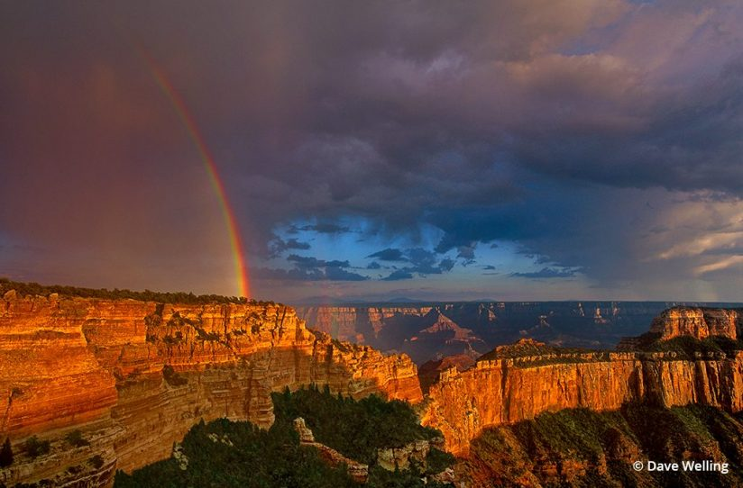 An image of monsoon photography with a rainbow.