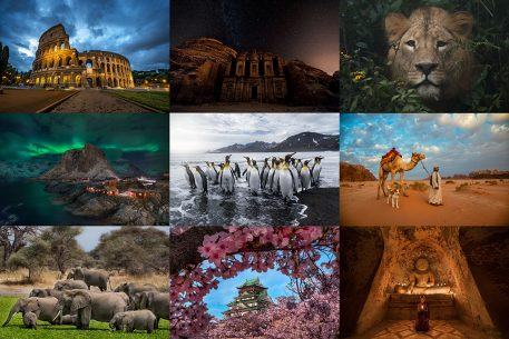 Photo collage of images from the author's recent travels