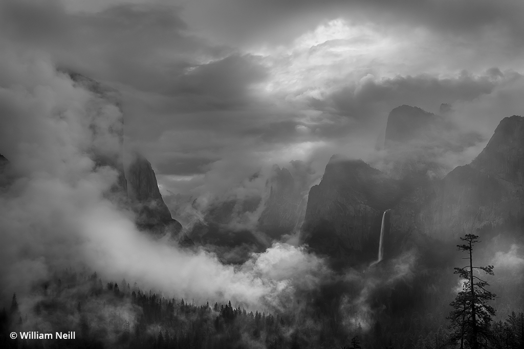 Image of a foggy morning at Yosemite Valley