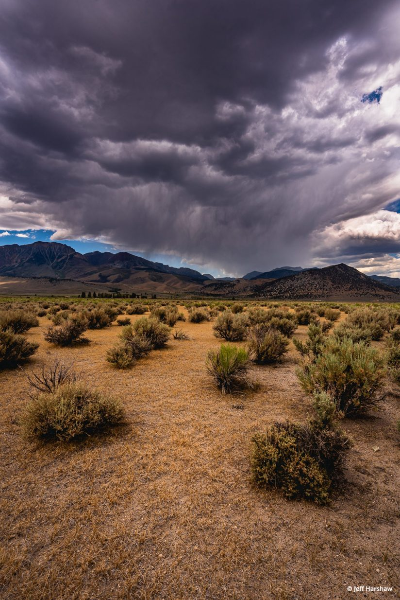 Storms Coming By Jeff Harshaw