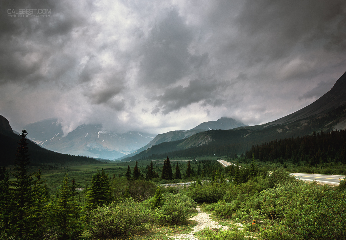 Icefields Parkway in Summer