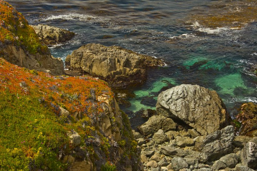 Close Up of Coast:  Garrapata State Park