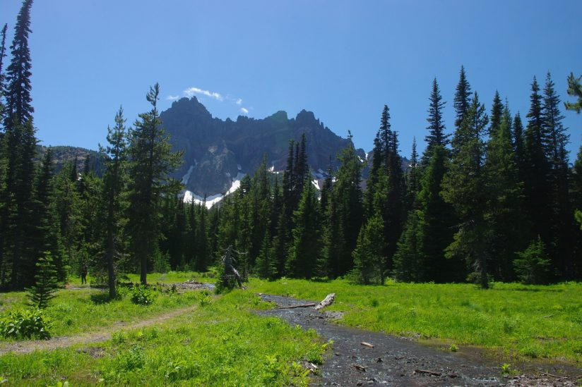 Canyon Meadows at the base of 3 Finger  Jack