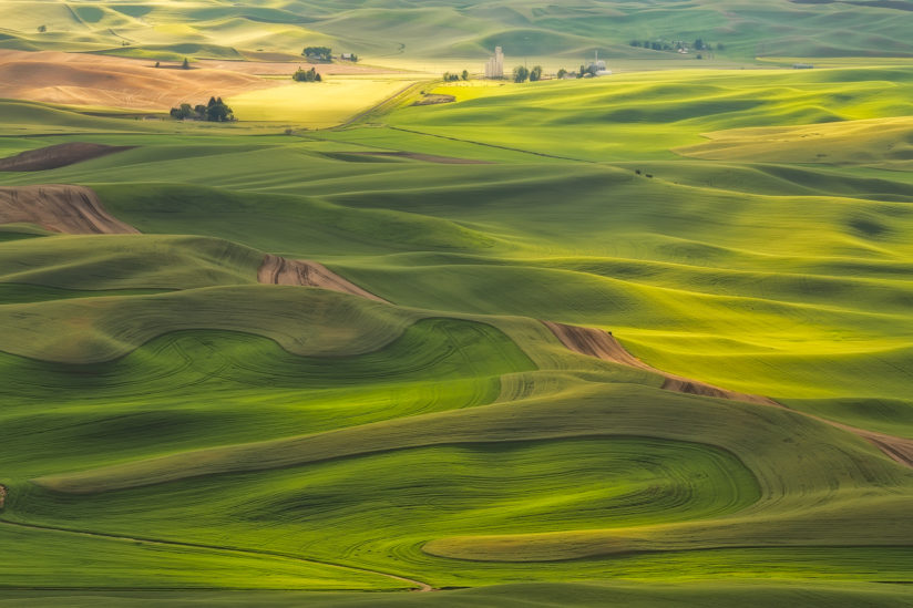 Palouse Views