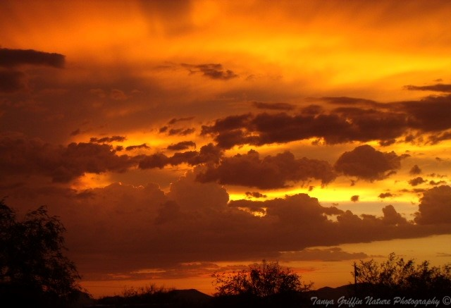 Vibrant Arizona Sunset