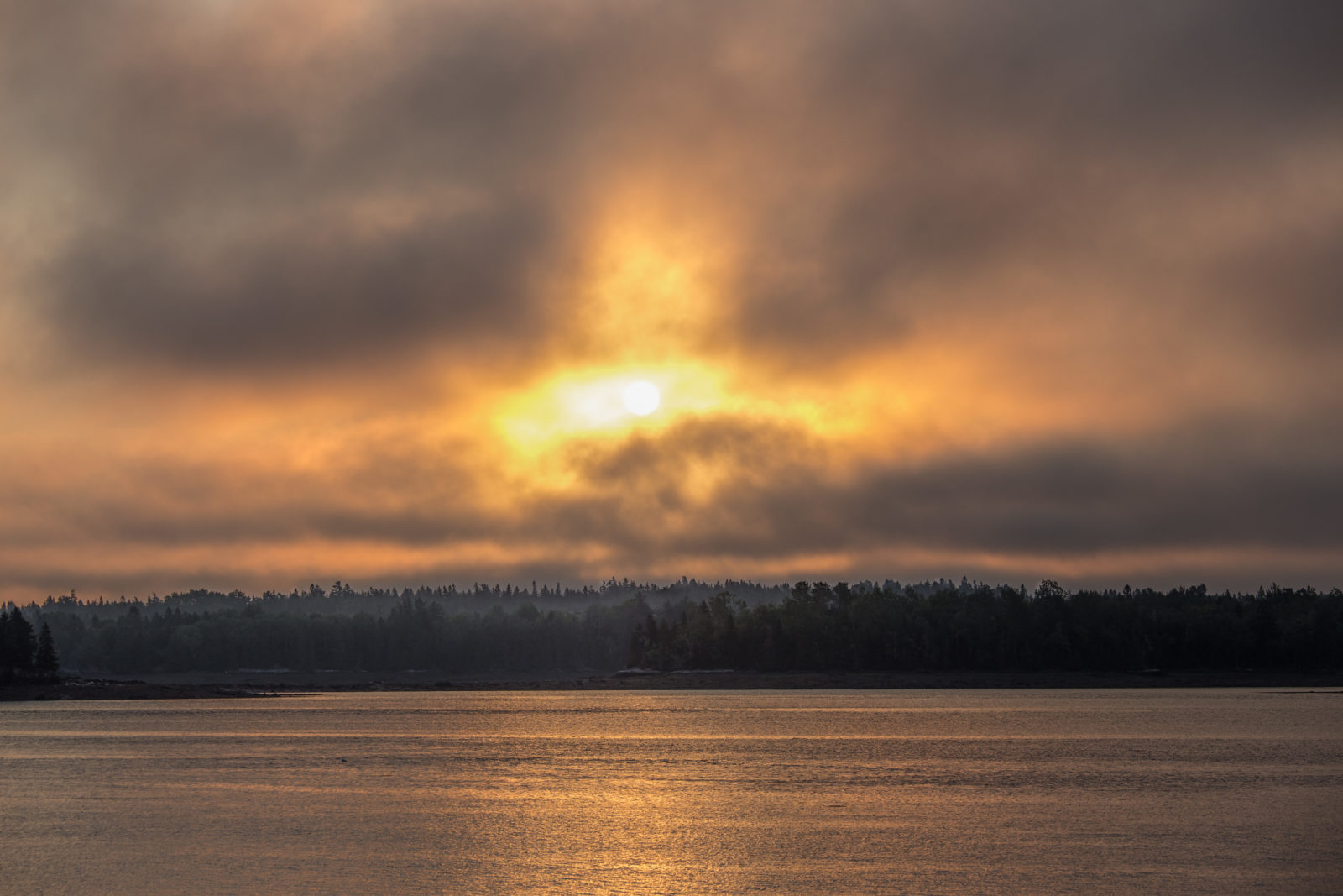 Sunrise, Cobscook Bay State Park