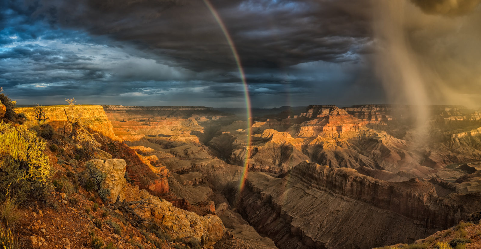 The Grace Within The Canyon