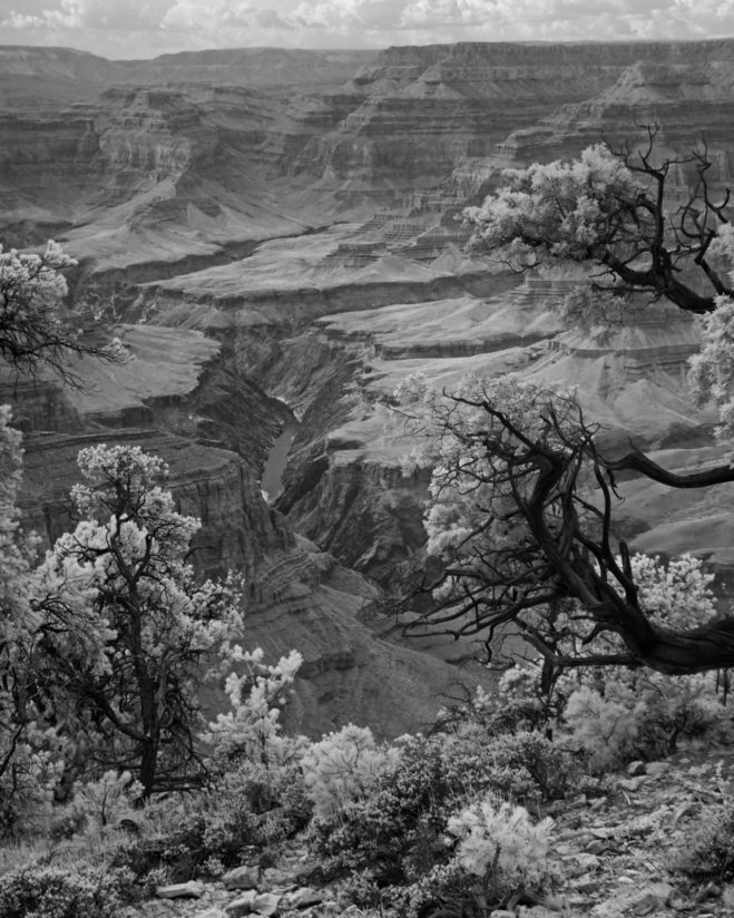 Grand Canyon IR 1