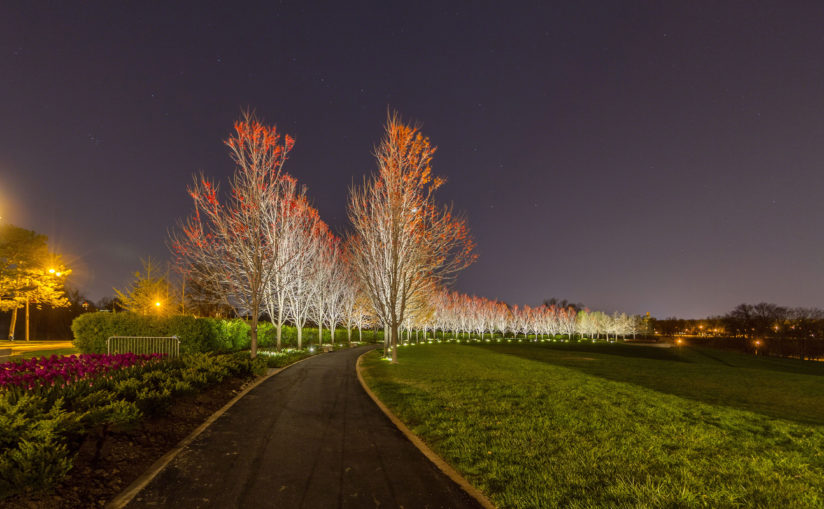 Forest Park Pathway