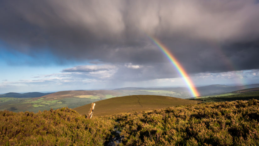 Wicklow Rainbow