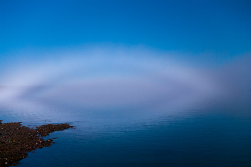 Fogbow over Mosqiuto Bay