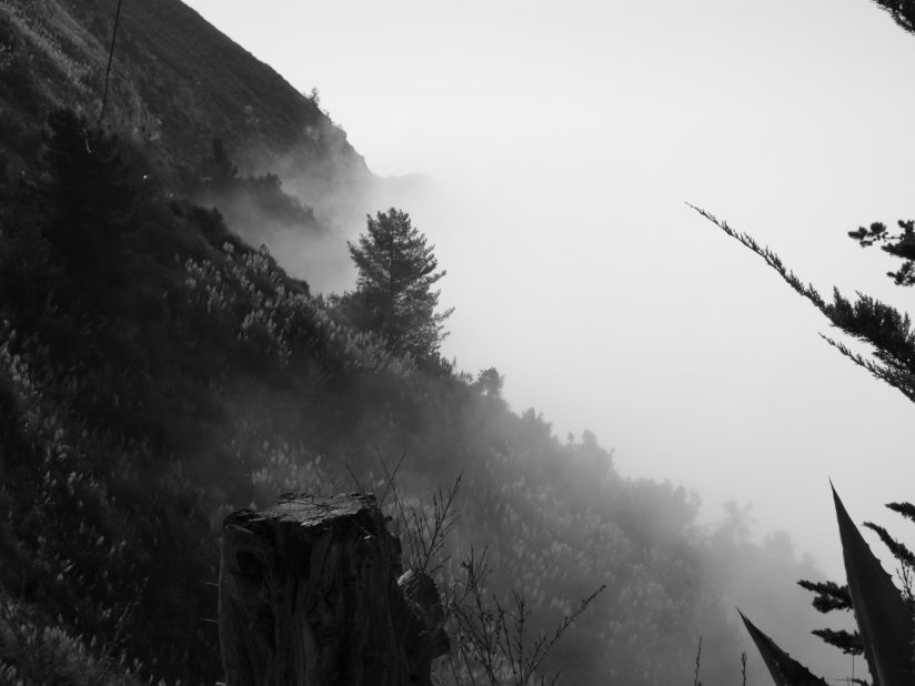 Foggy day in Big Sur September 2016