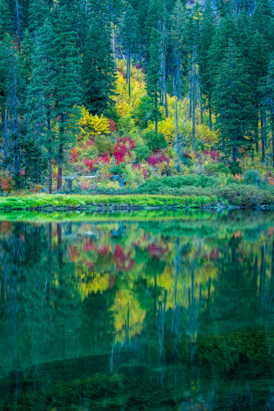 Fall on the Wenatchee River