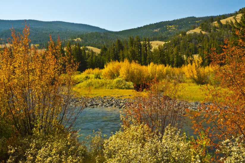 Autumn at Wind River
