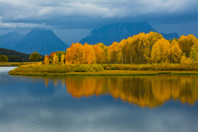 Late Afternoon at the Oxbow