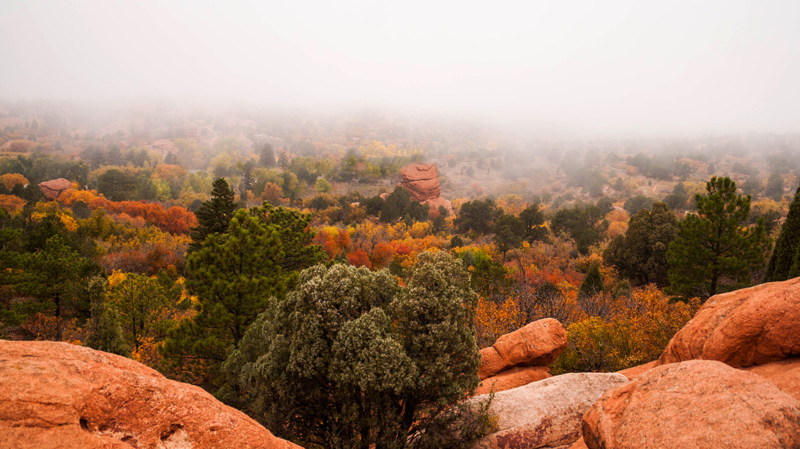 Fog Receding from Garden of the Gods