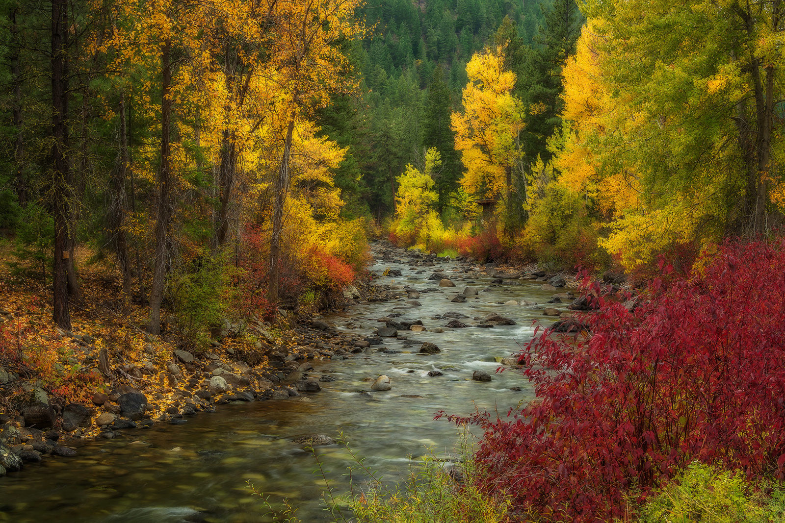 Autumn on the Twisp