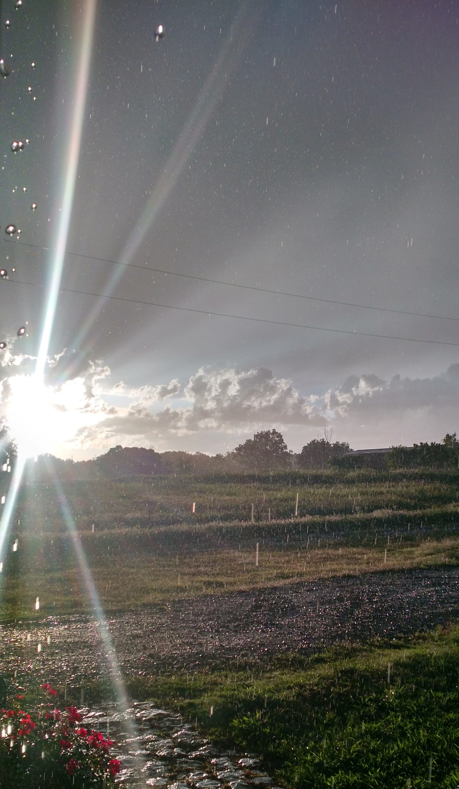 The sunshine during the storm