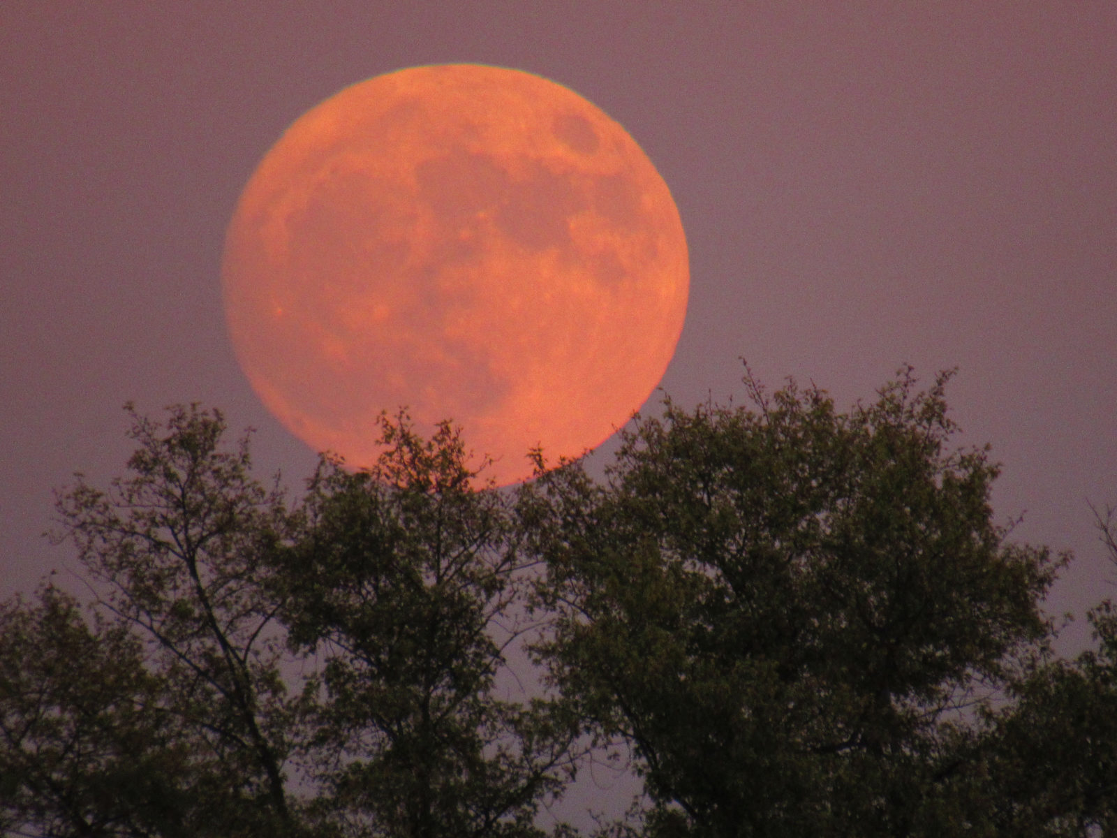 November 13 Super Moonrise