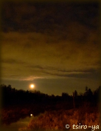 moon over summer creek