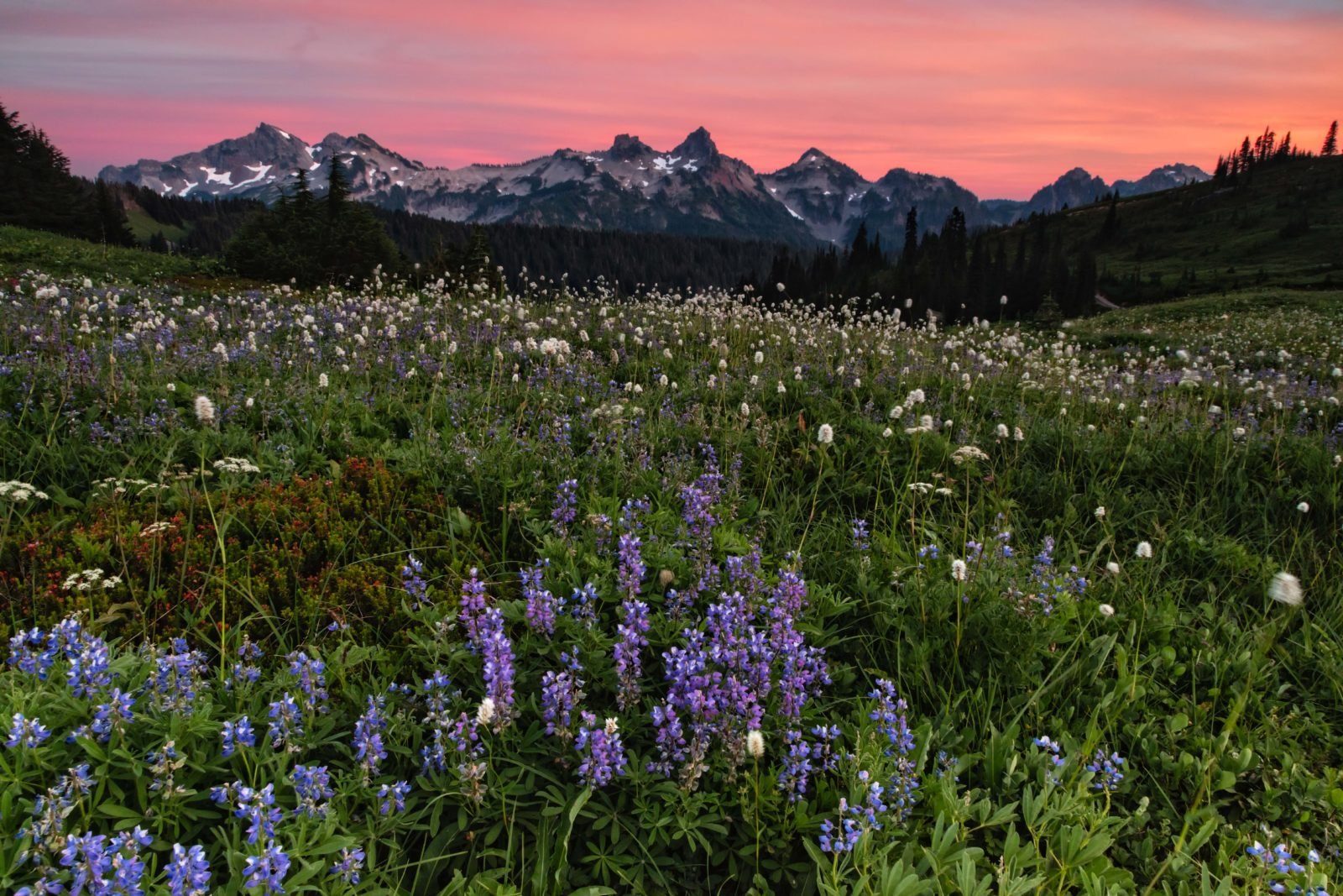 Sunset On The Tatoosh Range