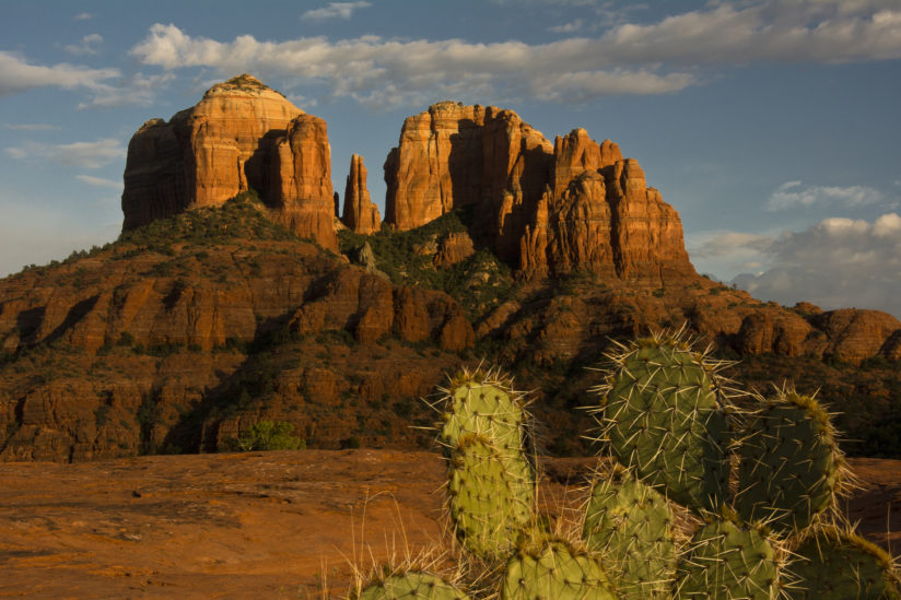 Late Afternoon at Cathedral Rock with Paddle Cactus in Foreground.